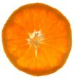 蔬果剖面0021,蔬果剖面,农业,