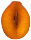 蔬果剖面0065,蔬果剖面,农业,