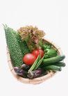 蔬菜天地0246,蔬菜天地,农业,黄瓜