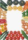蔬菜天地0258,蔬菜天地,农业,