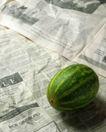 蔬菜天地0295,蔬菜天地,农业,