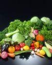 蔬菜天地0297,蔬菜天地,农业,