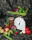 蔬菜天地0299,蔬菜天地,农业,