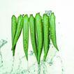 动感蔬菜0021,动感蔬菜,生活,
