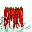 动感蔬菜0040,动感蔬菜,生活,
