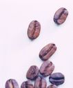 咖啡可可0053,咖啡可可,生活,