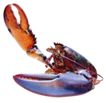 食材海鲜0059,食材海鲜,生活,