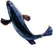 食材海鲜0079,食材海鲜,生活,