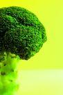 鲜味食物0063,鲜味食物,生活,