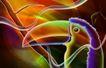 生活万像0049,生活万像,生活,鹦鹉 头部 大嘴缘