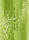 花纹0185,花纹,花卉,