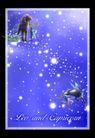 星语星愿0119,星语星愿,影楼摄影设计,