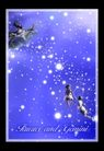 星语星愿0120,星语星愿,影楼摄影设计,