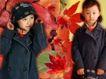 鲜花宝贝0054,鲜花宝贝,影楼摄影设计,枫叶 秋天打扮 小女孩