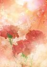 花卉0217,花卉,底纹,
