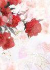 花卉0218,花卉,底纹,