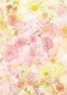 花卉0220,花卉,底纹,
