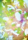 花卉0241,花卉,底纹,