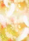 花卉0242,花卉,底纹,