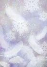 花卉0243,花卉,底纹,