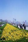 上海风景0066,上海风景,风景,