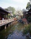 上海风景0078,上海风景,风景,