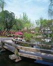 上海风景0094,上海风景,风景,
