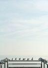 海洋风光0031,海洋风光,风景,