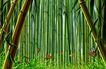 大自然景观0016,大自然景观,风景,